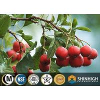 Quality Hawthorn extract for sale