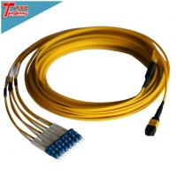 Fiber Optic 8F MPO MTP LC Singlemode Harness OS2 Plenum Cable Assembly