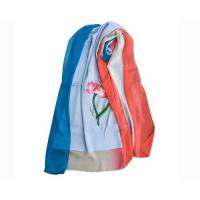 Quality Summer Silk Georgette Gradient Ramp Shawl and Red Neck Scarves with Embroidery for sale