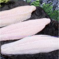 Quality Fishes Frozen Pangasius Fillet for sale