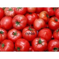 Buy cheap Tomato Paste 28-30HB tomato paste from wholesalers