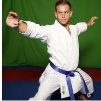 Buy cheap Kamikaze PREMIER KATA Gi - WKF Approved from wholesalers