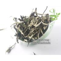 Buy cheap Bai Mu Dan White tea from wholesalers