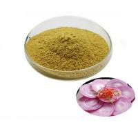 Quality Pure Herbal Onion Extract Quercetin 98% for sale