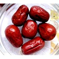 Quality Natural Jujube for sale