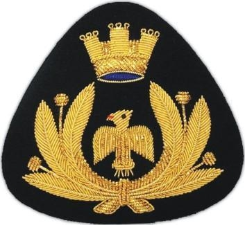 China cap badges AAE 361
