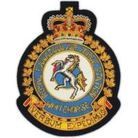 Quality air force badges AAE 287 for sale
