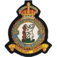 Quality air force badges AAE 285 for sale