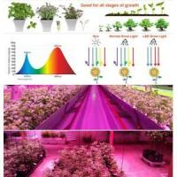 Veg Bloom Two Channels LED Grow Light