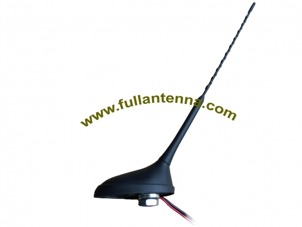 China AM/FM Antenna Model: FAAMFM.04