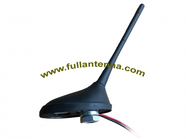 China AM/FM Antenna Model: FAAMFM.03
