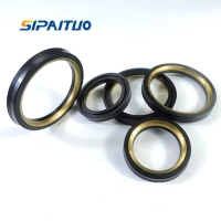 Quality Plug Valve Seals And Kits for sale