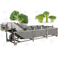Quality Automatic Broccoli Florets Washing Machine Supplier for sale