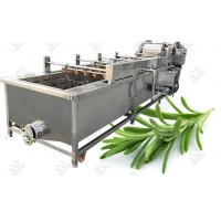 Quality Bubble Type Rosemary Leaves Washing Machine for sale