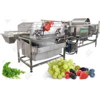 Quality Vortex Type Salad Leaves Washing Process Machine for sale