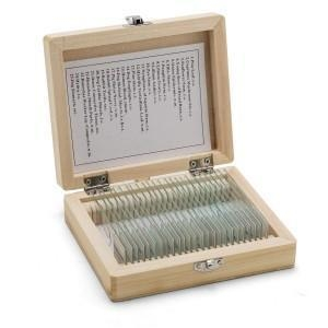 China Prepared Microscope Slides