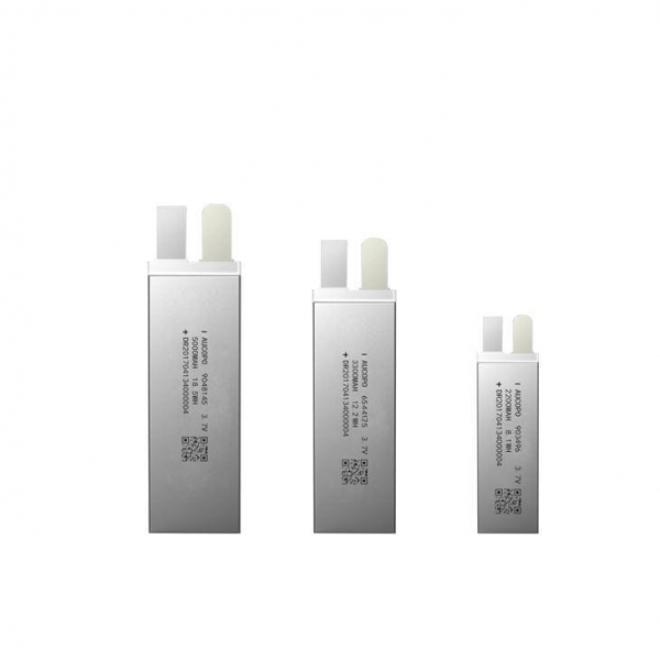 China Lithium Polymer Cells