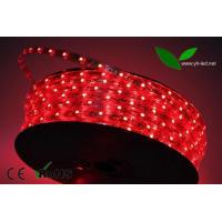 Buy 5050 SMD 60R LED/M 220V high voltage strip at wholesale prices
