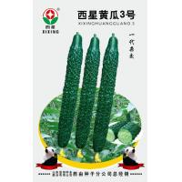 Buy cheap Cucumber Seeds Westar Cucumber 3 from wholesalers